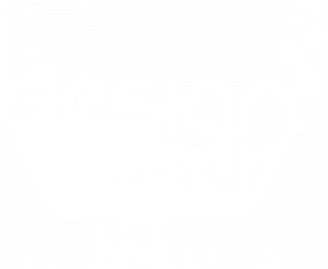 Designwash Logo